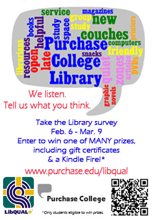 Library Survey 2012 Flyer
