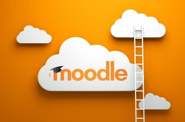 Moodle Ladder Logo